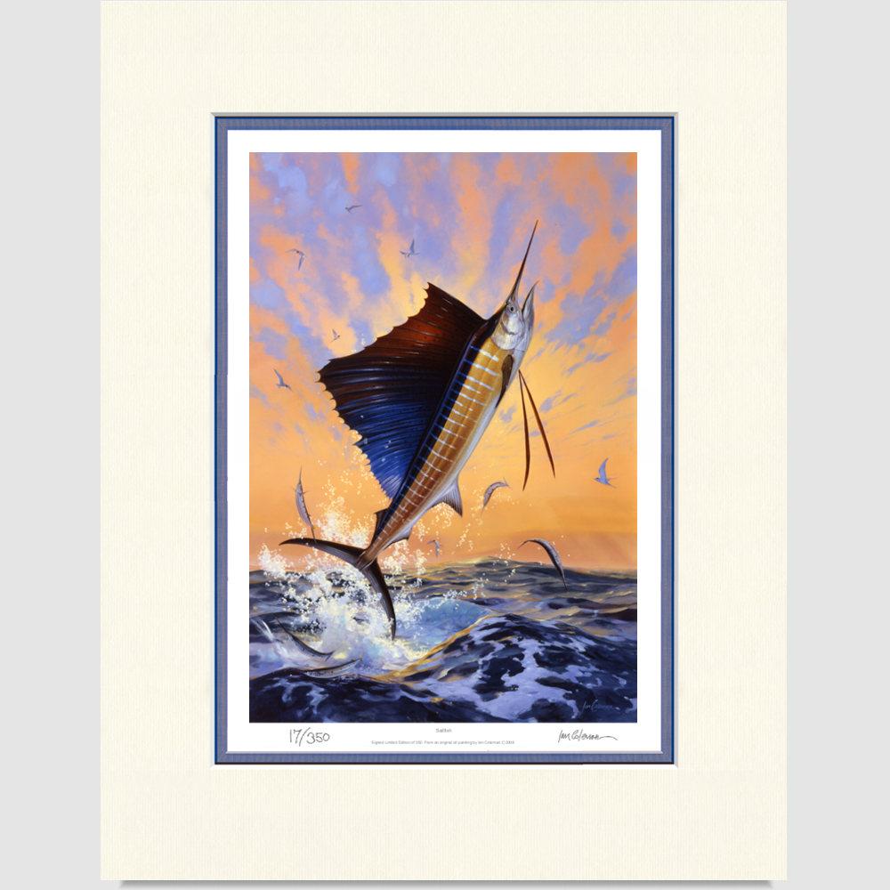 sailfish-large-print-by-ian-coleman