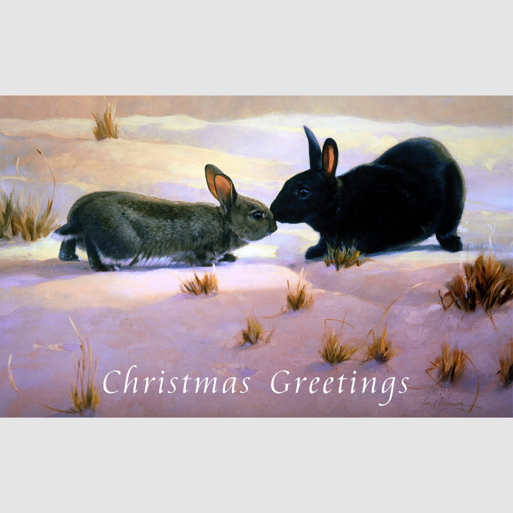 xmas-card-rabbits-kiss-by-ian-coleman-copyright-2004-christmas-greetings