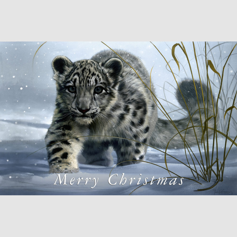 Wildlife Christmas Cards.Christmas Cards 5 Or 10 Pack Snow Leopard 18 X 12cm