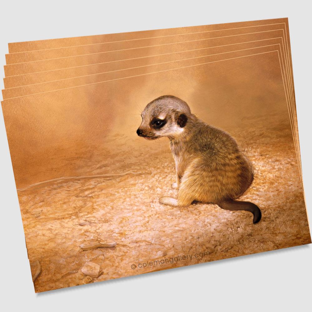 meerkat-postcard-by-ian-coleman-copyright