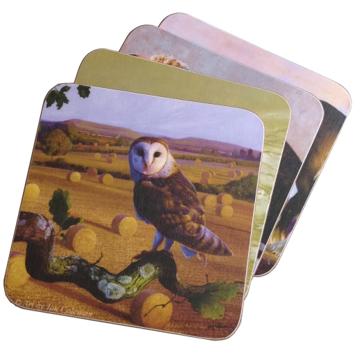 barn-owl-coaster-stack