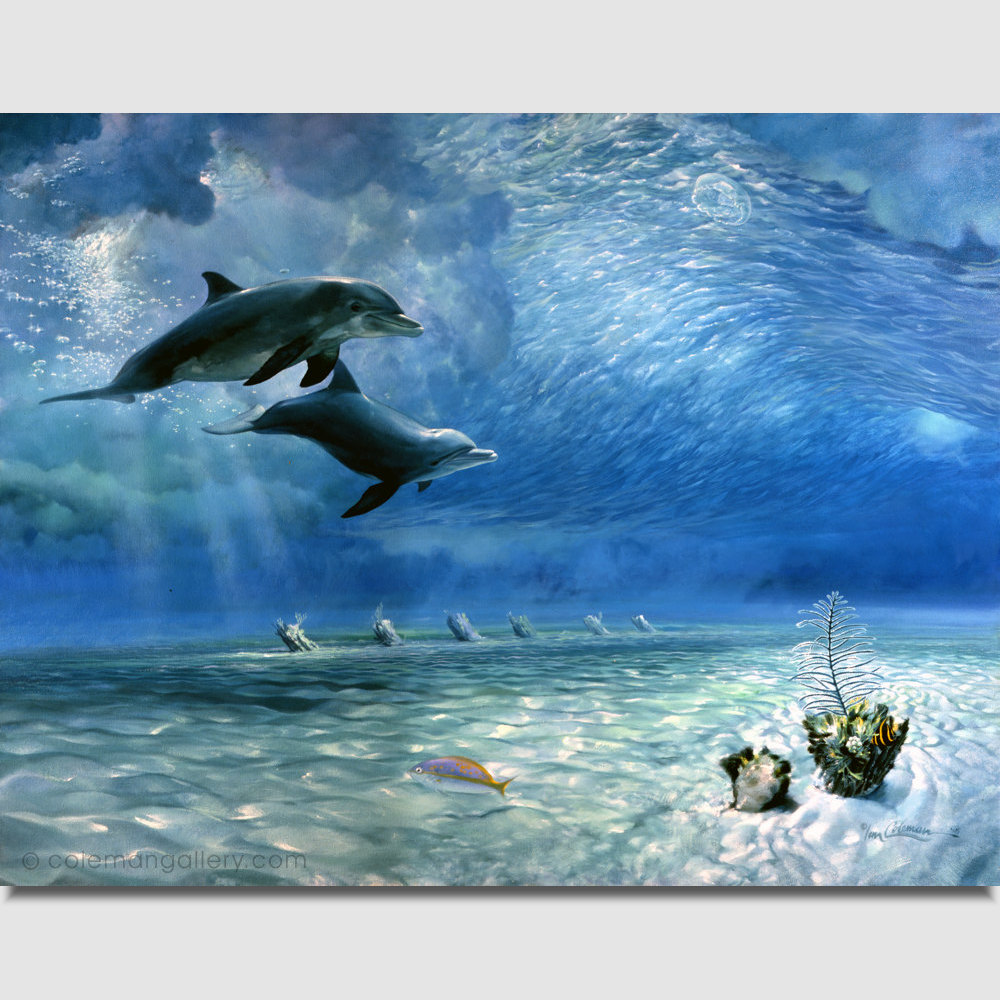 bottlenose-dolphins-under-the-big-swell-v2