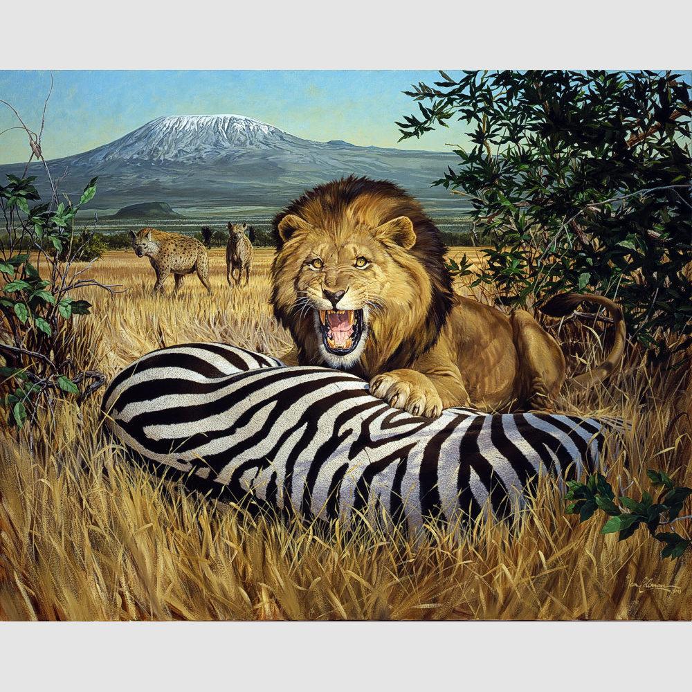 kilimanjaro-lion-1k-pixels-2-by-ian-coleman