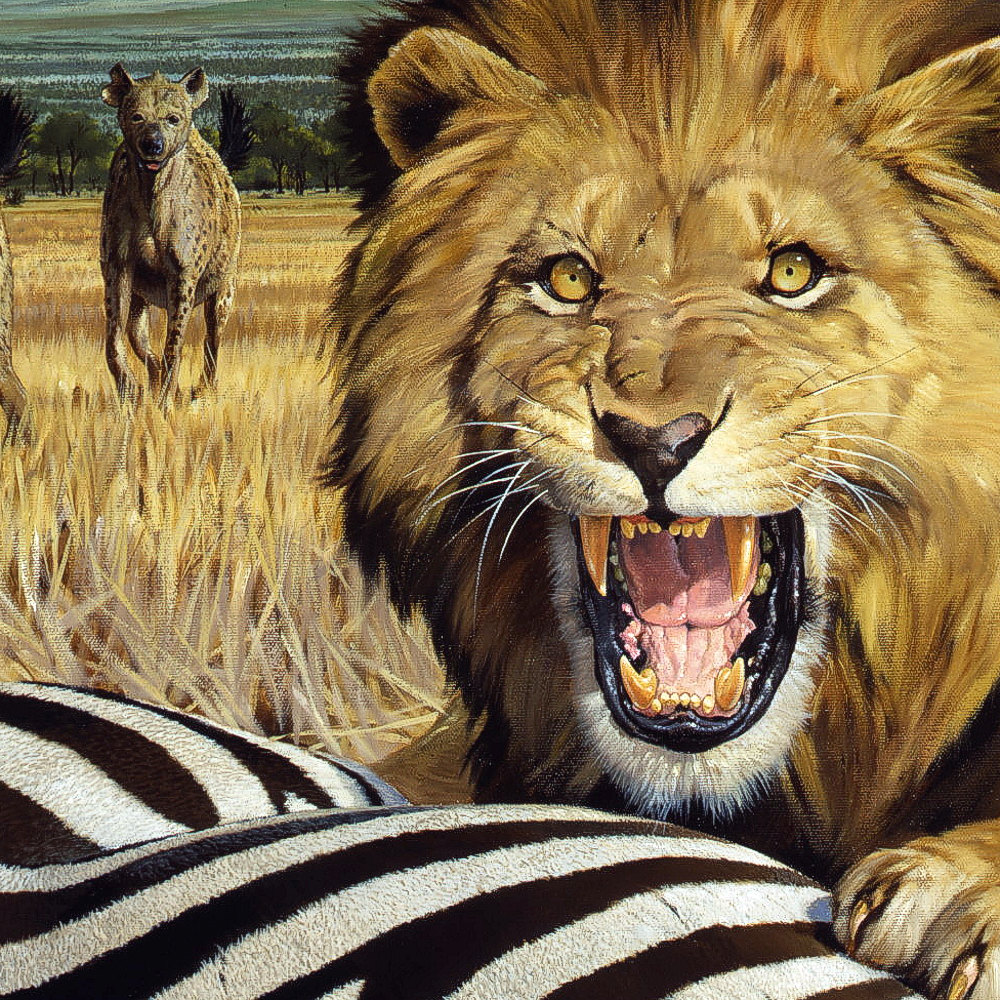 Lion And Hyenas Original Painting Coleman Gallery