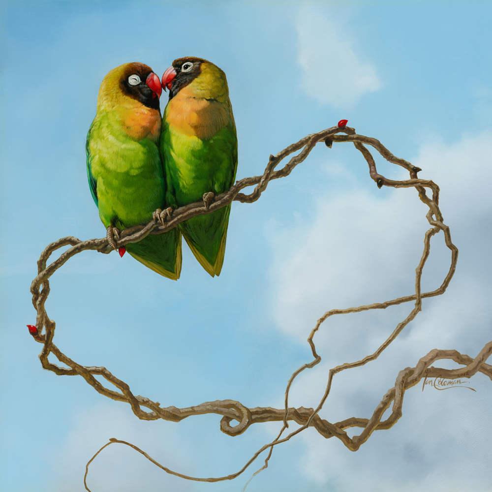 Love Birds 1k