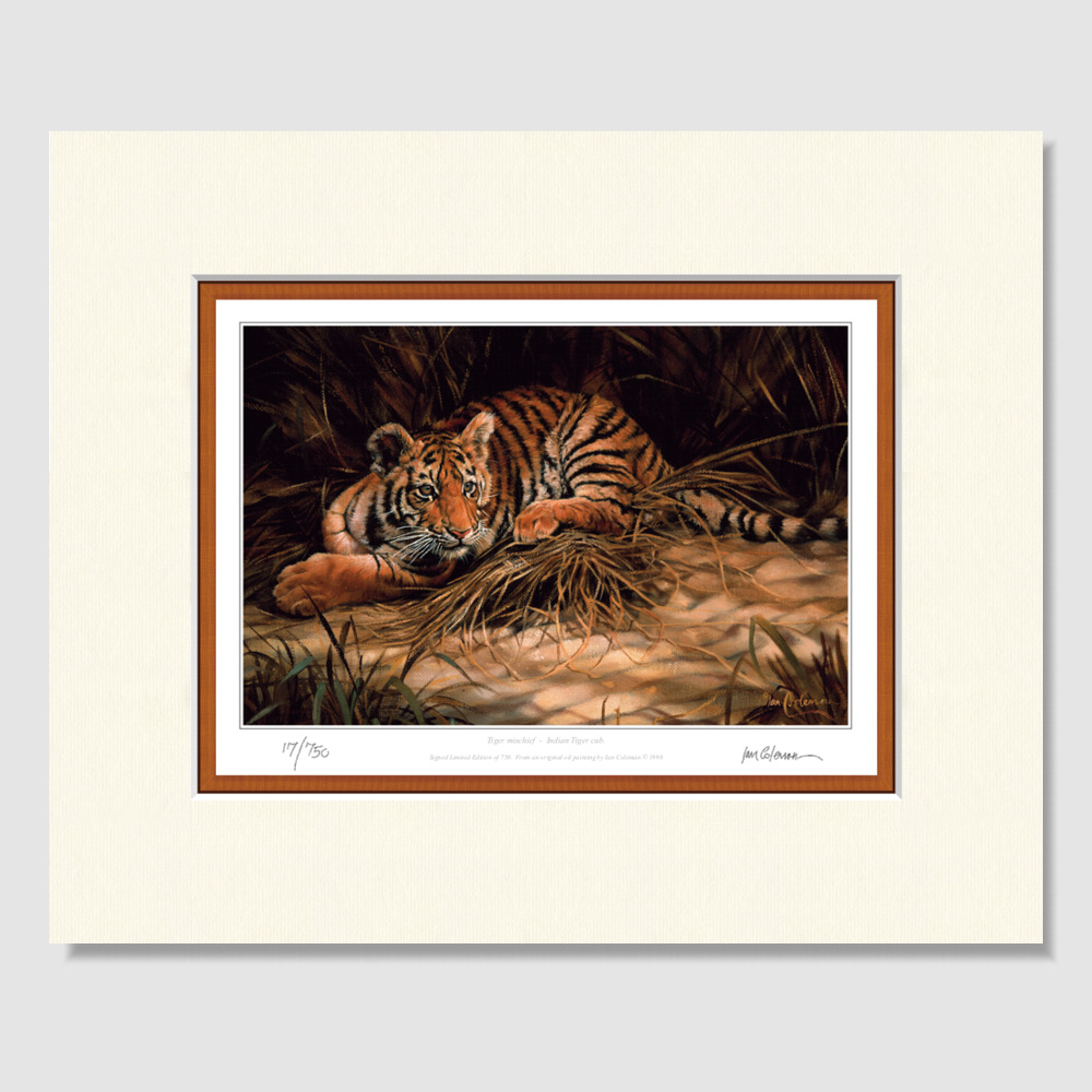 small-paper-print-tiger-mischief