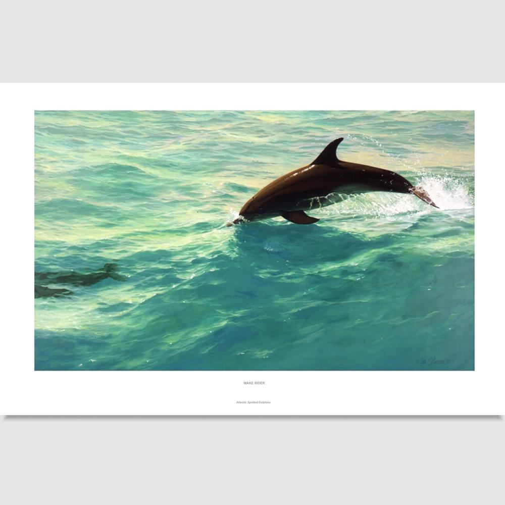 wake-rider-large-print