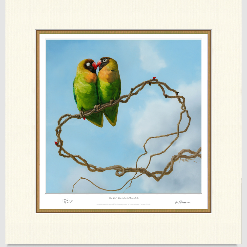 lovebirds-large-print-by-ian-coleman